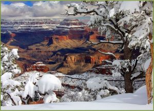 snowy-grand-canyon